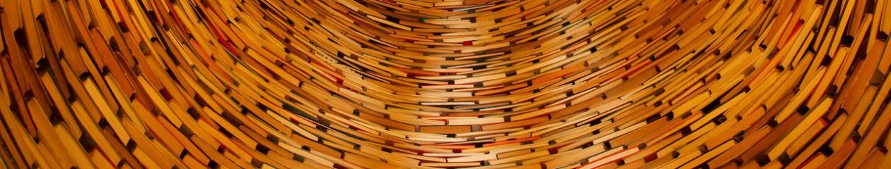 Lire les sciences sociales